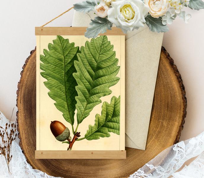 Sienas dekors - Vintage Ozolzīle Chestnut