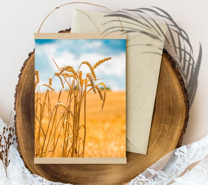 #wheat