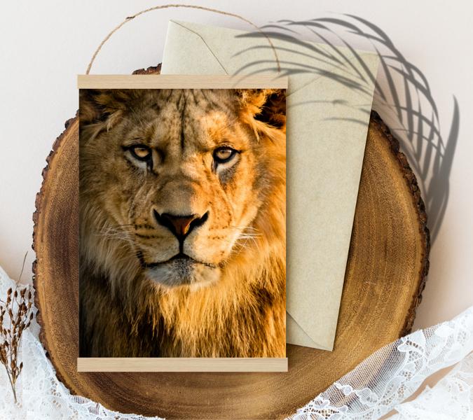 Lauva #/